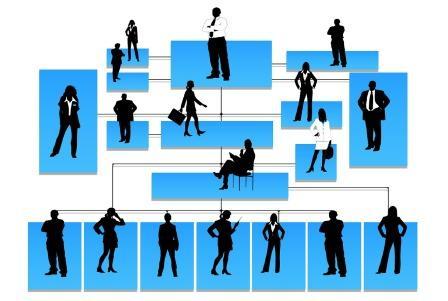 Organigrama de uma empresa